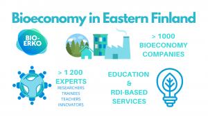 Bioeconomy in Eastern Finland